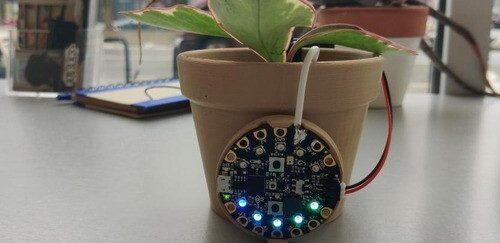 Planttastic Tech